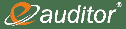 eAuditor WEB Logo